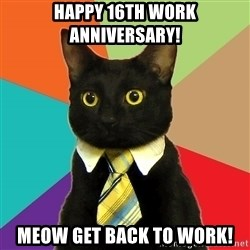 Business Cat - Happy 16th work anniversary! meow get back to work!
