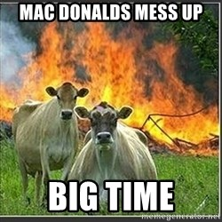 Evil Cows - mac donalds mess up  big time