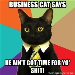 Business Cat - Business cat says he ain't got time for yo' shit!