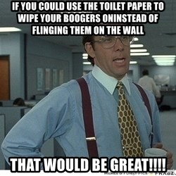 That would be great - IF YOU COULD USE THE TOILET PAPER TO WIPE YOUR BOOGERS ONINSTEAD OF FLINGING THEM ON THE WALL tHAT WOULD BE GREAT!!!!