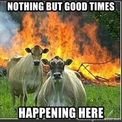 Evil Cows - Nothing but Good times Happening Here