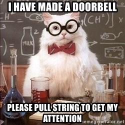 Chemistry Cat - I have made a doorbell Please pull string to get my attention