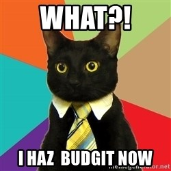 Business Cat - What?!  i haz  budgit now