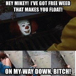 Pennywise in sewer - Hey Mikey!  I've got free weed that makes you float! On my way down, Bitch!