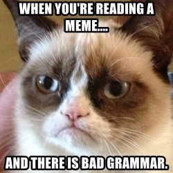 Angry Cat Meme - When you're reading a meme.... And there is bad grammar.