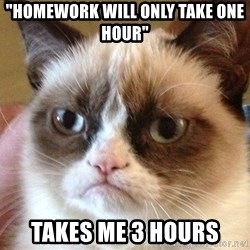 "Angry Cat Meme - ""Homework will only take one hour"" TAkes me 3 hours"