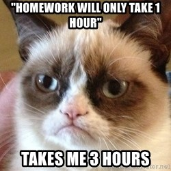 "Angry Cat Meme - ""Homework will only take 1 hour"" Takes me 3 hours"