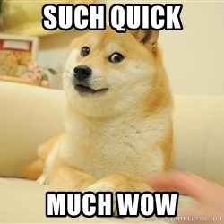 so doge - Such quick Much wow
