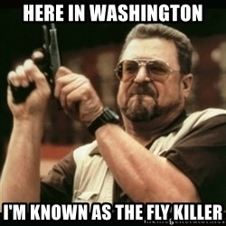 am i the only one around here - Here in Washington I'm known as the fly killer
