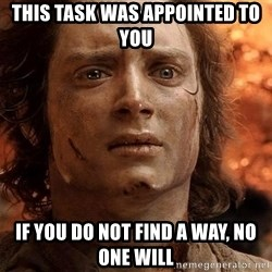 Frodo  - This task was appointed to YOU IF YOU DO NOT FIND A WAY, NO ONE WILL