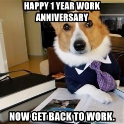 Dog Lawyer - Happy 1 Year Work Anniversary Now get back to work.