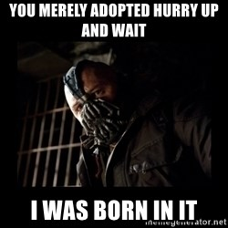 Bane Meme - You merely adopted hurry up and wait  I was born in it