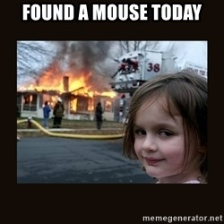 burning house girl - found a mouse today