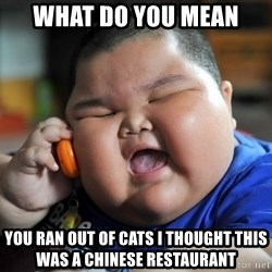 Fat Asian Kid - What do YOU mean you ran out of cats i thought this was a Chinese restaurant