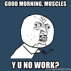 y u no work - Good morning, Muscles y u no work?