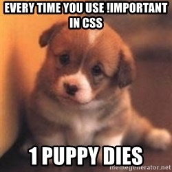 cute puppy - Every time you use !important in CSS 1 Puppy dies