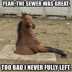 Hole Horse - Yeah, the sewer was great. too bad i never fully left.