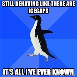 Socially Awkward Penguin - Still behaving like there are icecaps It's all i've ever known