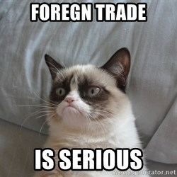 Grumpy cat good - Foregn Trade IS SERIOUS