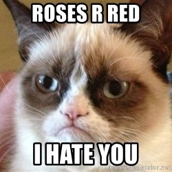 Angry Cat Meme - Roses r red I hate you