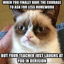 Grumpy Cat  - When you finally have the courage to ask for less homework but your teacher just laughs at you in derision