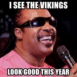 stevie wonder - I see the Vikings Look good this year