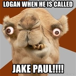 Crazy Camel lol - logan when he is called jake paul!!!!