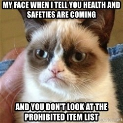 Grumpy Cat  - My face when I tell you health and safeties are coming  and you don't look at the prohibited item list