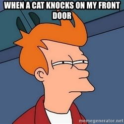 Futurama Fry - when a cat knocks on my front door