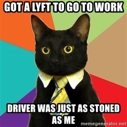 Business Cat - Got a lyft to go to work Driver was just as stoned as me
