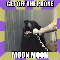 Yes, this is dog! - Get off the phone moon moon