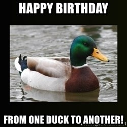 good advice duck - Happy birthday From one duck to another!