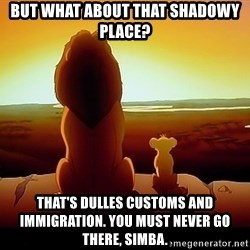 simba mufasa - But what about that shadowy place? That's dulles customs and immigration. You must never go there, Simba.