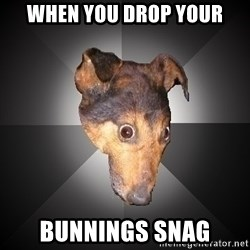 Depression Dog - When you drop your Bunnings snag
