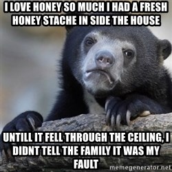 Confession Bear - i love honey so much i had a fresh honey STAChe in side the house untill it fell through the ceiling, i didnt tell the family it was my fault