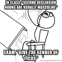 "Desk Flip Rage Guy - In class, ""Second declension nouns are usually masculine"" exam, ""Give the gender of Fīcus"""