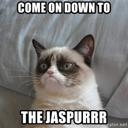 Grumpy cat good - Come on down to The Jaspurrr