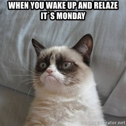 Grumpy cat good - when you wake up and relaze it`s monday