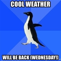 Socially Awkward Penguin - Cool WEATHER WILL BE BACK (WEDNESDAY!)