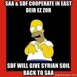 Homer retard - SAA & SDF cooperate in east deir ez zor sdf will give syrian soil back to saa