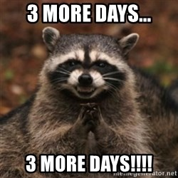 evil raccoon - 3 More Days... 3 More Days!!!!