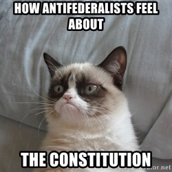 Grumpy cat good - How ANTIFEDEralists feel about  The constitution