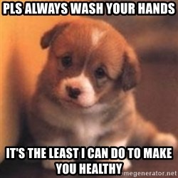 cute puppy - pls always wash your hands  it's the least i can do to make you healthy