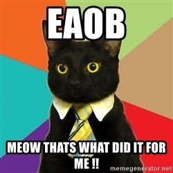 Business Cat - EAOB Meow thats what did it for me !!