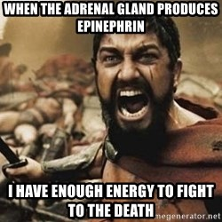 300 - When the adrenal gland produces epinephrin I have enough energy to fight to the death