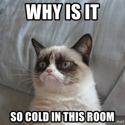 Grumpy cat good - why is it so cold in this room