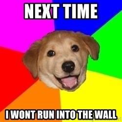 Advice Dog - next time  i wont run into the wall
