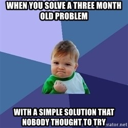 Success Kid - When you solve a three month old problem with a simple solution that nobody thought to try