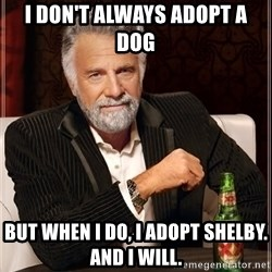 The Most Interesting Man In The World - i don't always adopt a dog but when i do, i adopt shelby. and i will.