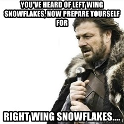 Prepare yourself - You've heard of left wing snowflakes, now prepare yourself for Right wing snowflakes....